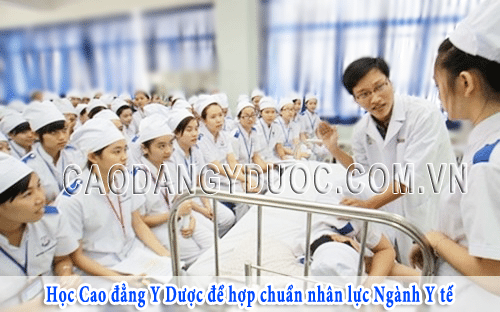 hoc cao dang y duoc hop chuan nhan luc nganh y