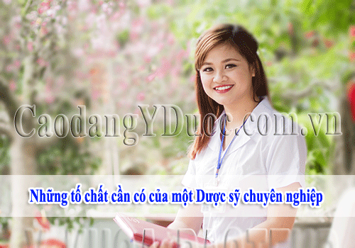 nhung-to-chat-can-co-cua-duoc-sy-chuyen-nghiep